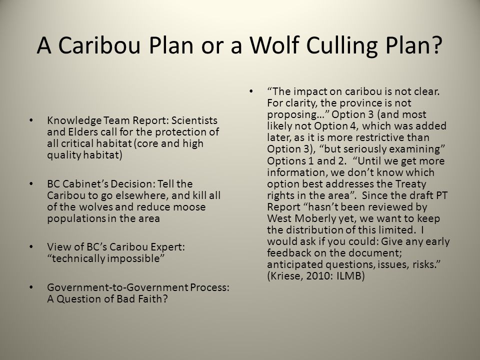 A Caribou Plan or a Wolf Culling Plan
