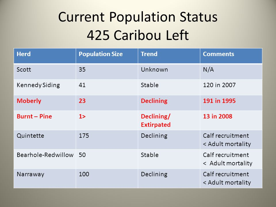 Current Population Status 425 Caribou Left