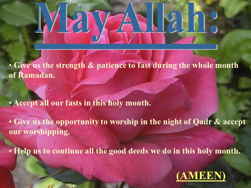 ____________ May Allah: (AMEEN)