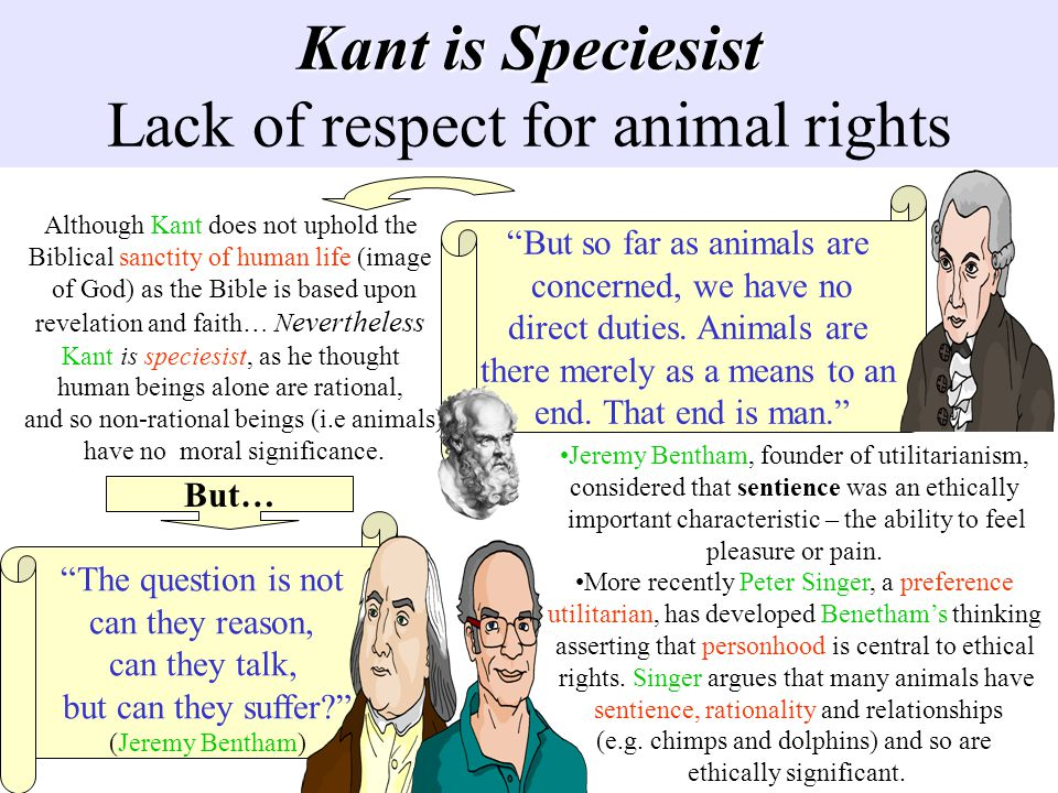 Kant is Speciesist Lack of respect for animal rights