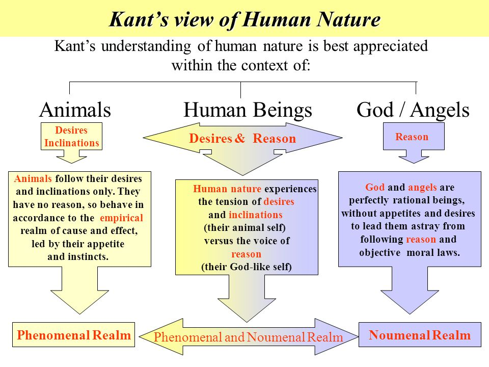 Kant's view of Human Nature