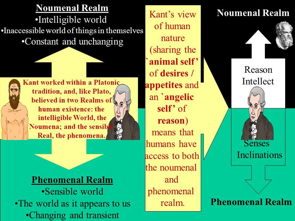 Noumenal Realm Phenomenal Realm