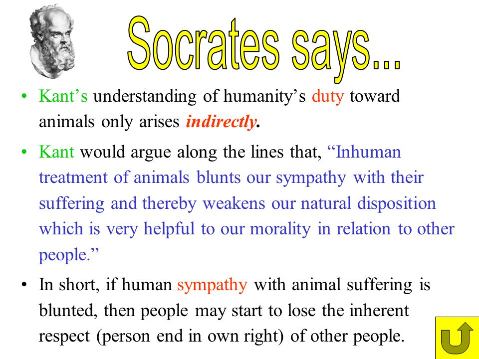 Socrates says... Kant's understanding of humanity's duty toward animals only arises indirectly.