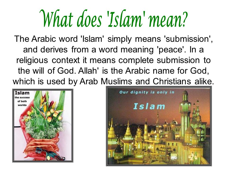 What does Islam mean