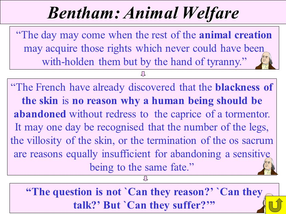 Bentham: Animal Welfare