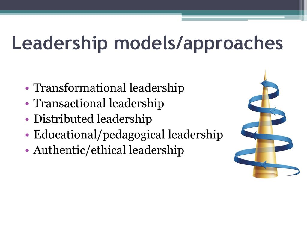Leadership approaches and practices - ppt download