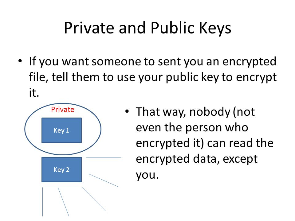 Private and Public Keys