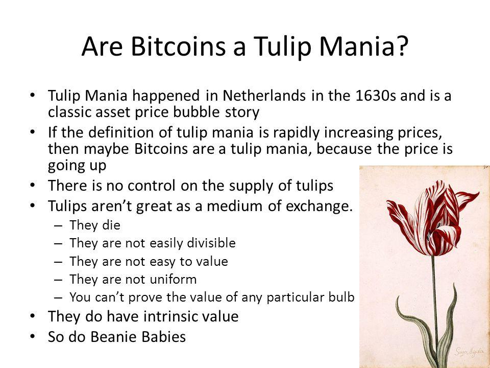 Are Bitcoins a Tulip Mania