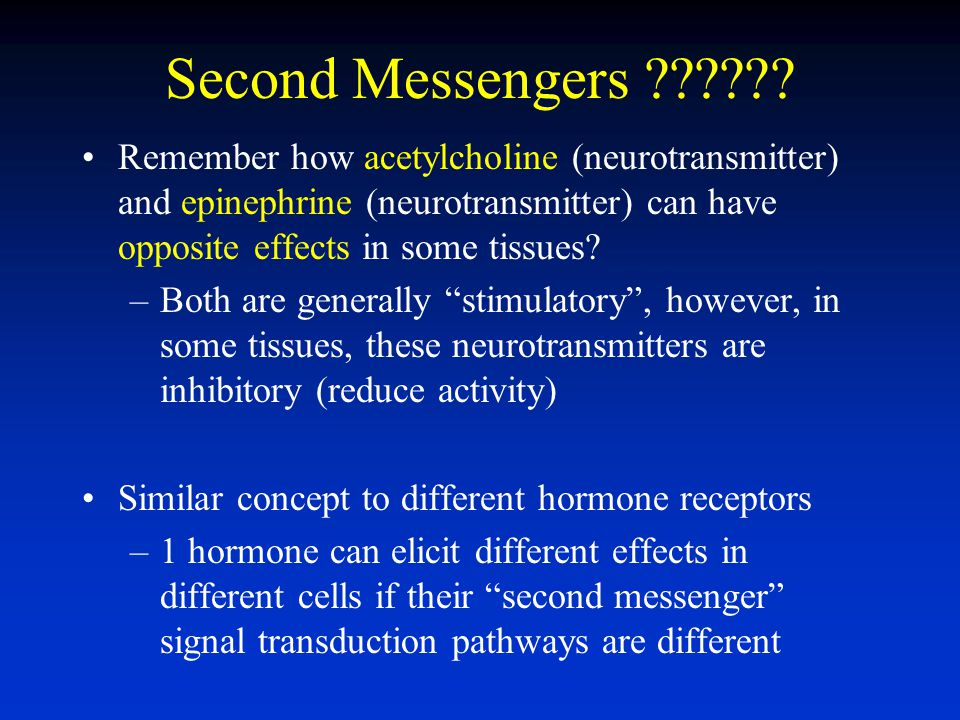 Second Messengers Remember how acetylcholine (neurotransmitter) and epinephrine (neurotransmitter) can have opposite effects in some tissues