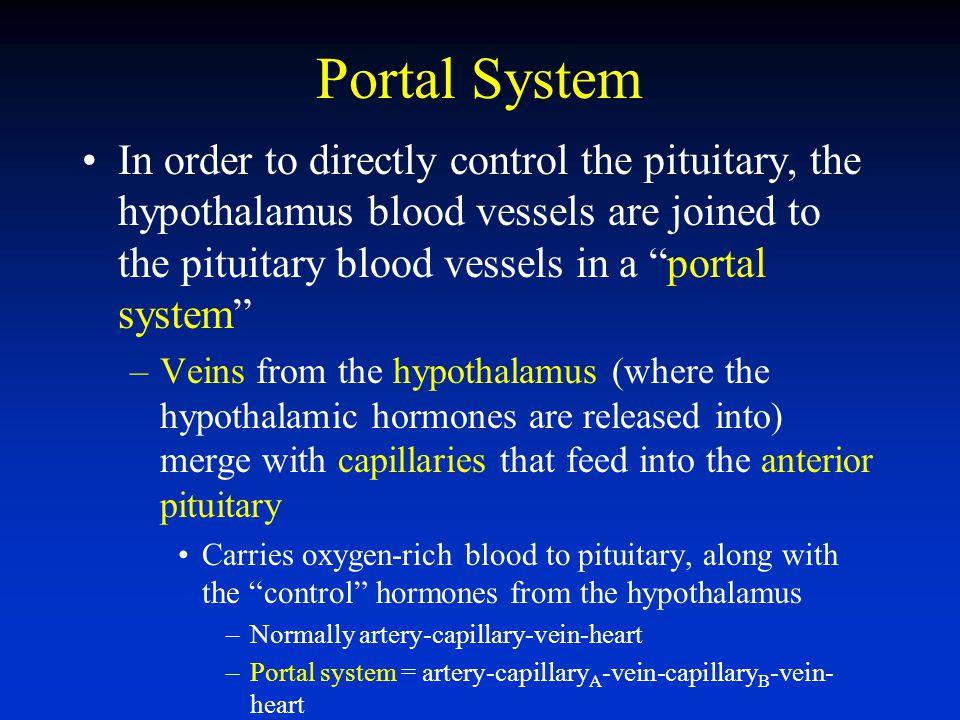 Portal System