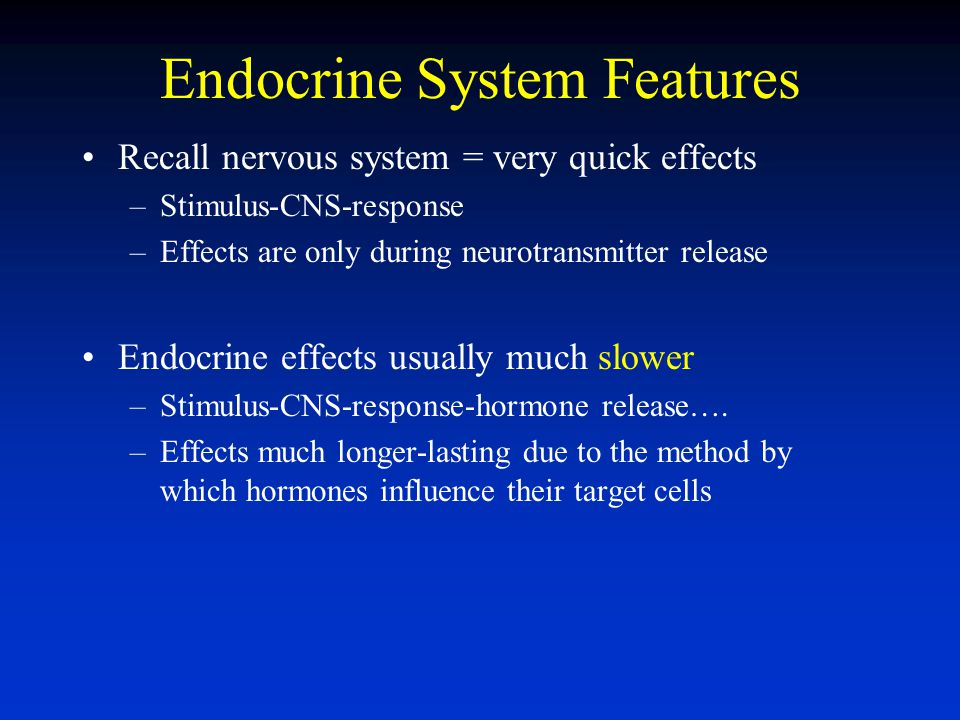 Endocrine System Features