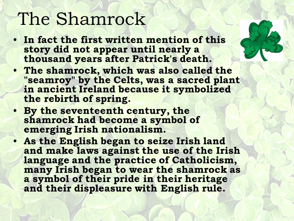 The Shamrock In fact the first written mention of this story did not appear until nearly a thousand years after Patrick s death.