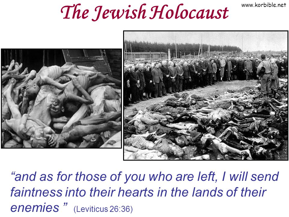 The Jewish Holocaust