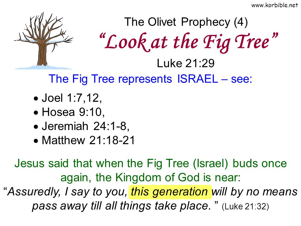 The Olivet Prophecy (4) Look at the Fig Tree Luke 21:29