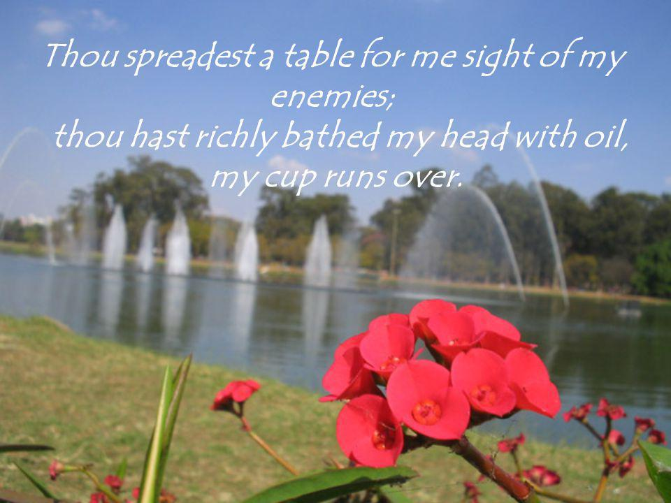 Thou spreadest a table for me sight of my enemies; thou hast richly bathed my head with oil, my cup runs over.