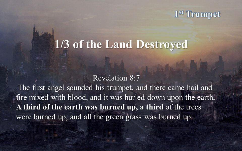 1/3 of the Land Destroyed 1st Trumpet Revelation 8:7