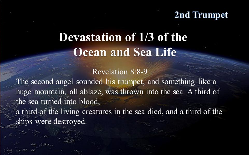 Devastation of 1/3 of the Ocean and Sea Life