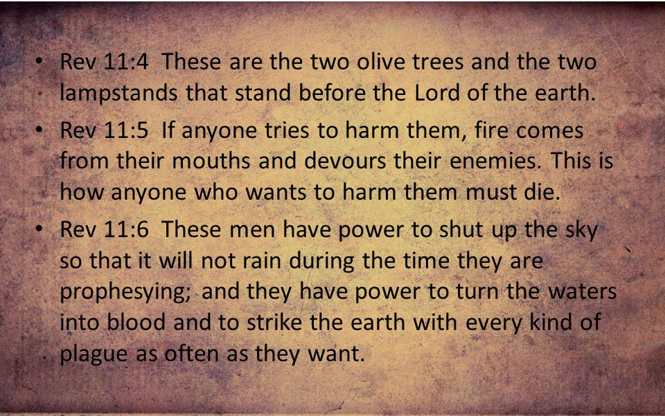 Rev 11:4 These are the two olive trees and the two lampstands that stand before the Lord of the earth.