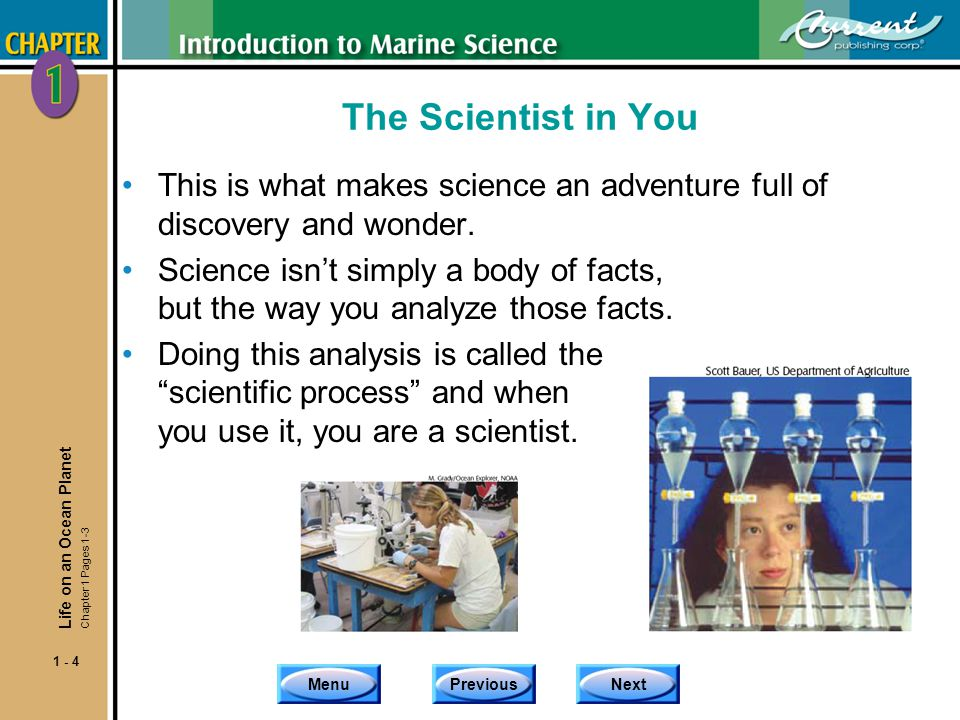 The Scientist in You This is what makes science an adventure full of discovery and wonder.