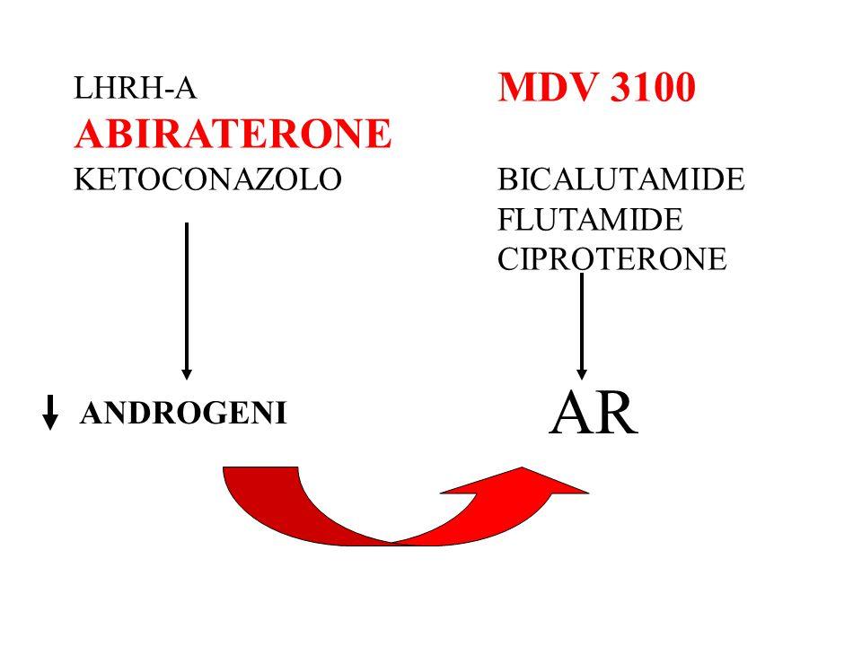 AR MDV 3100 ABIRATERONE LHRH-A BICALUTAMIDE KETOCONAZOLO FLUTAMIDE