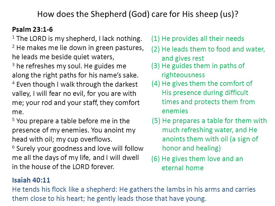 How does the Shepherd (God) care for His sheep (us)