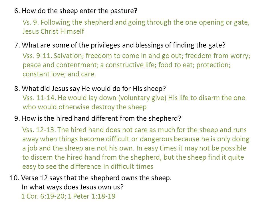 6. How do the sheep enter the pasture