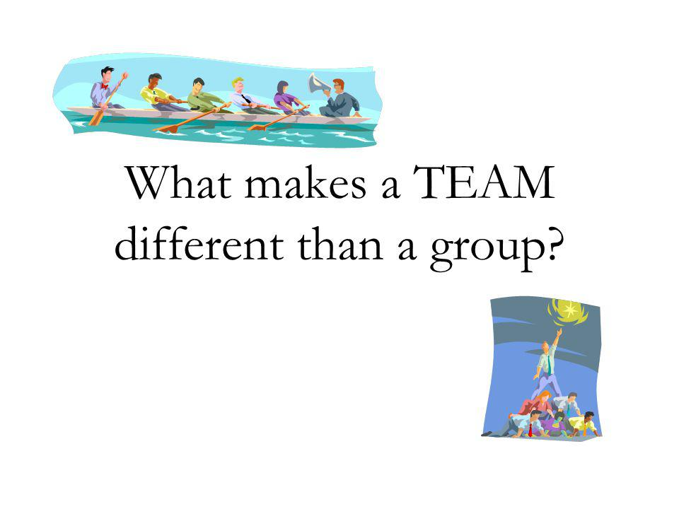 What makes a TEAM different than a group