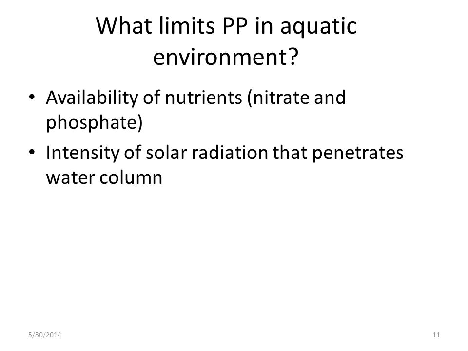What limits PP in aquatic environment