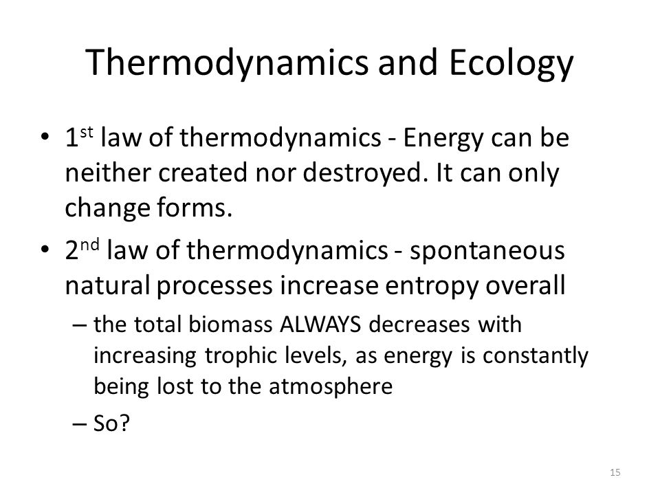 Thermodynamics and Ecology