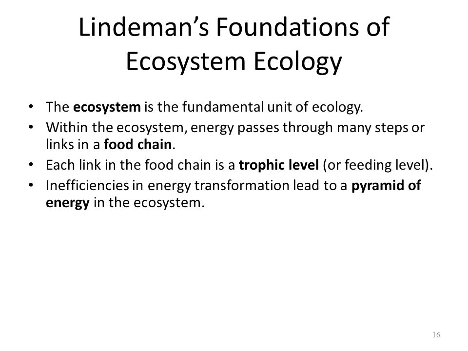 Lindeman's Foundations of Ecosystem Ecology