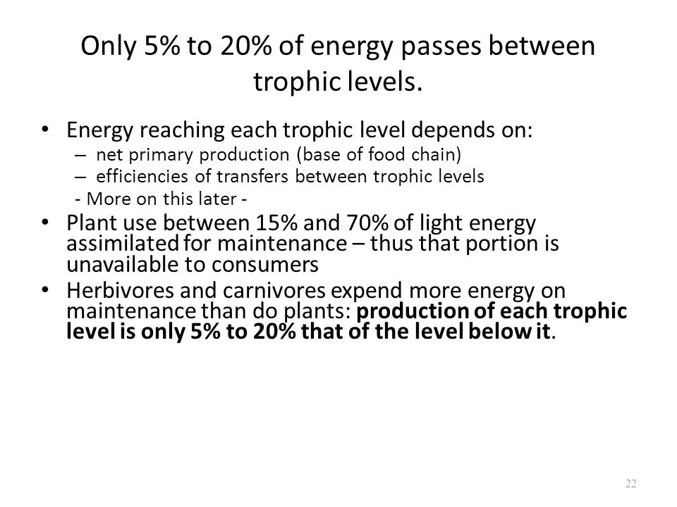 Only 5% to 20% of energy passes between trophic levels.
