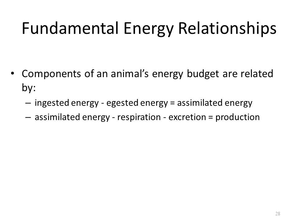 Fundamental Energy Relationships