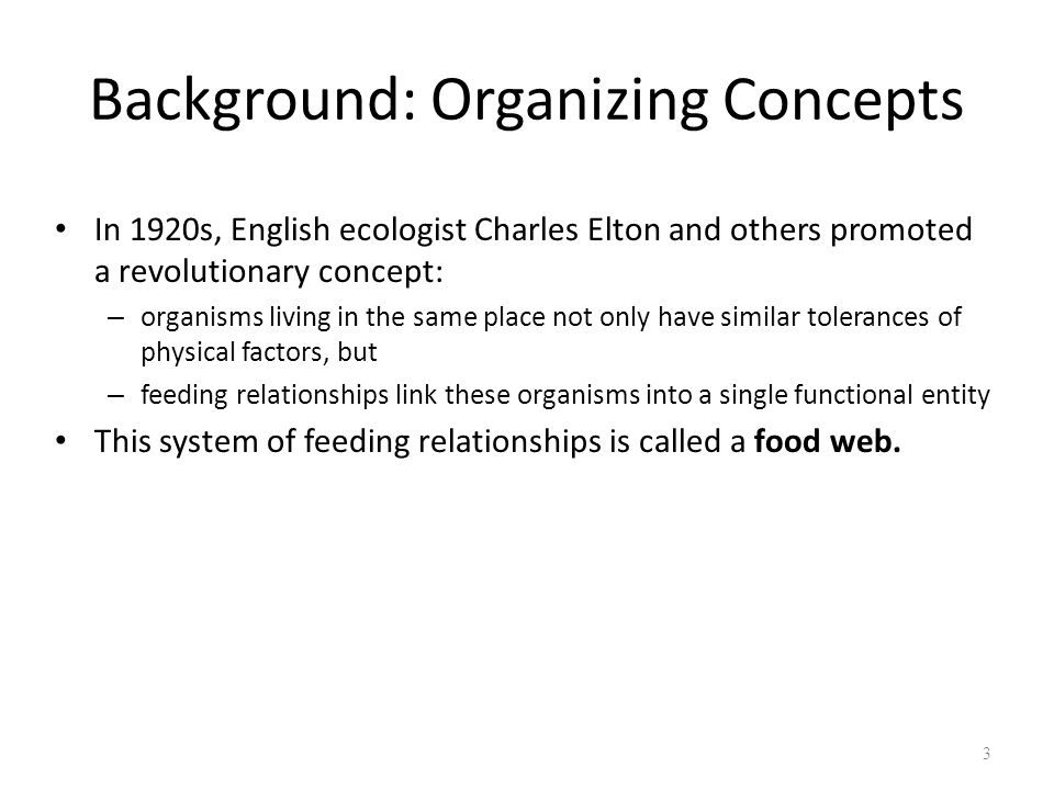 Background: Organizing Concepts