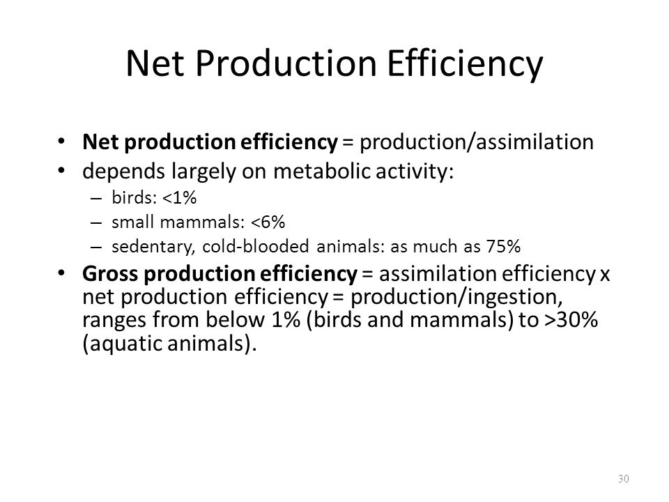 Net Production Efficiency