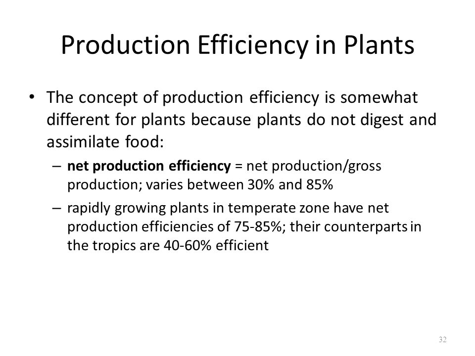 Production Efficiency in Plants
