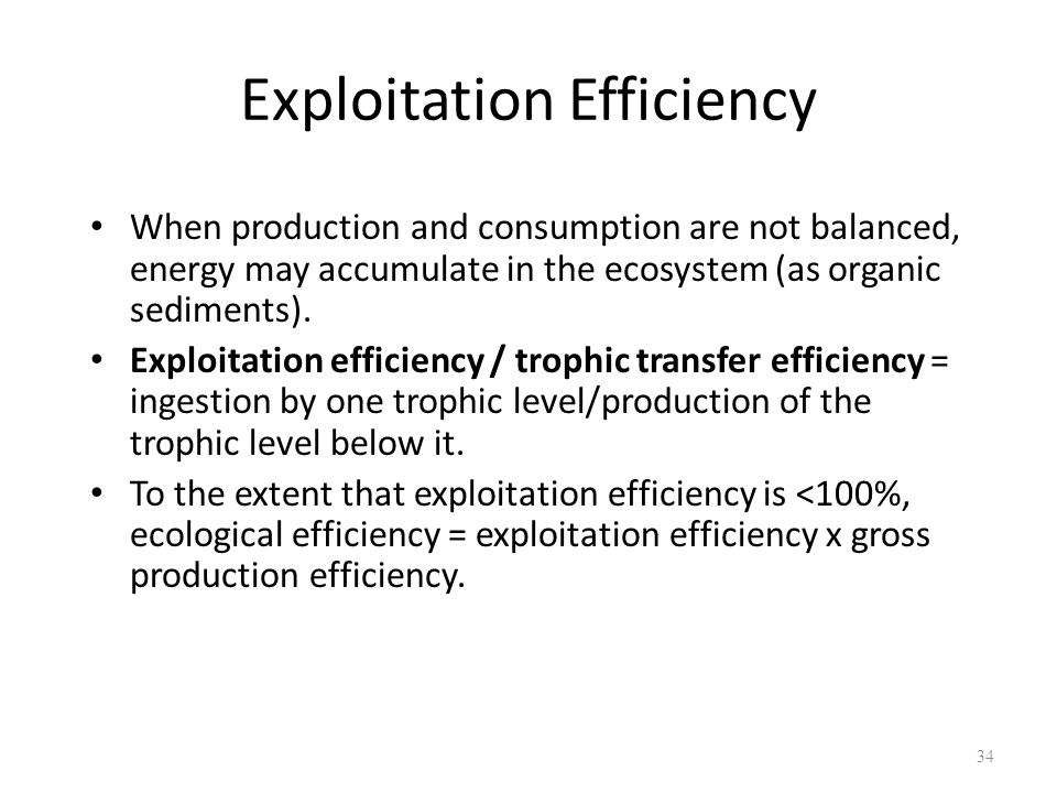 Exploitation Efficiency