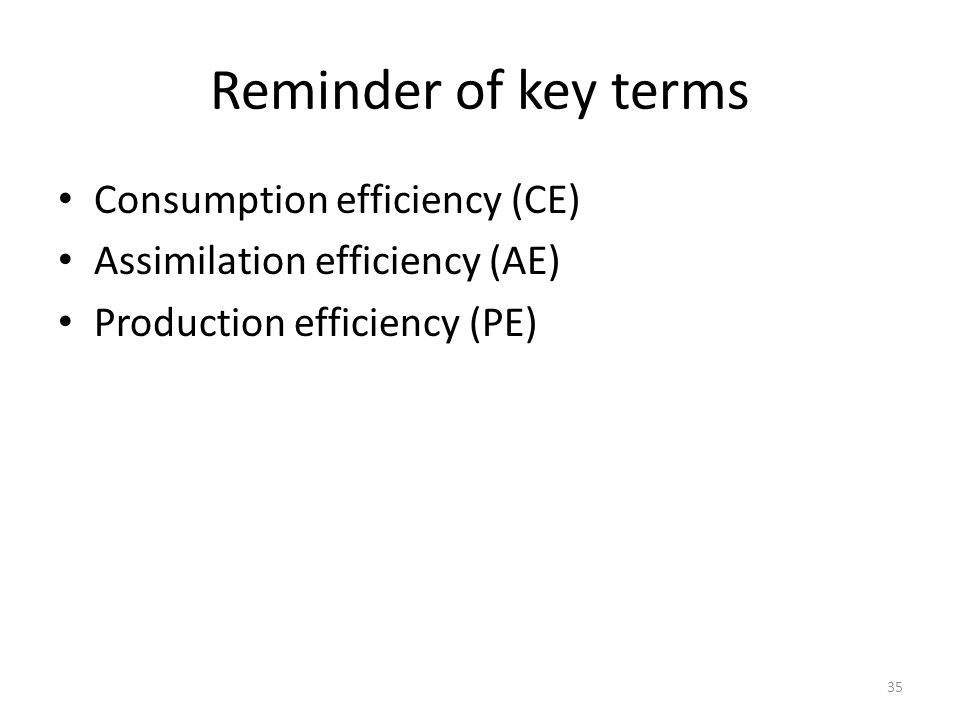 Reminder of key terms Consumption efficiency (CE)