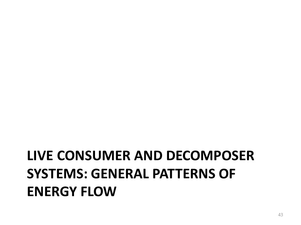 Live consumer and decomposer systems: general patterns of energy flow