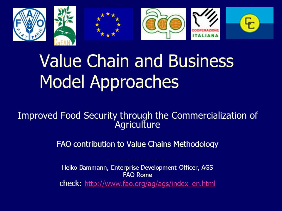 Value Chain and Business Model Approaches