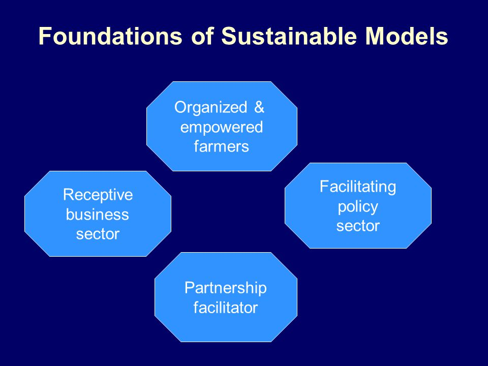 Foundations of Sustainable Models