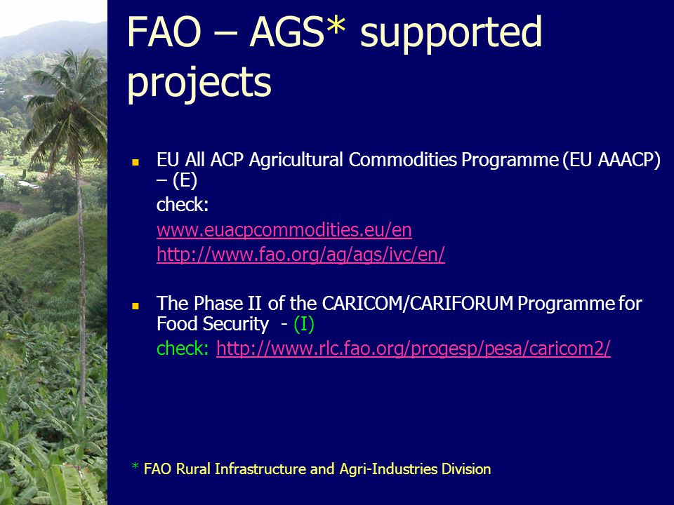 FAO – AGS* supported projects