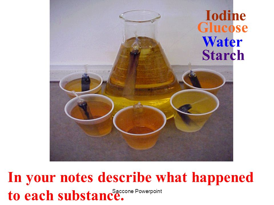 In your notes describe what happened to each substance.