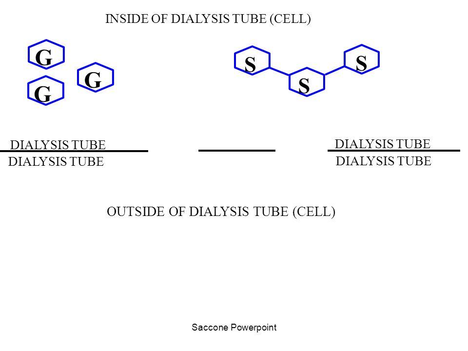 G G G S OUTSIDE OF DIALYSIS TUBE (CELL) INSIDE OF DIALYSIS TUBE (CELL)