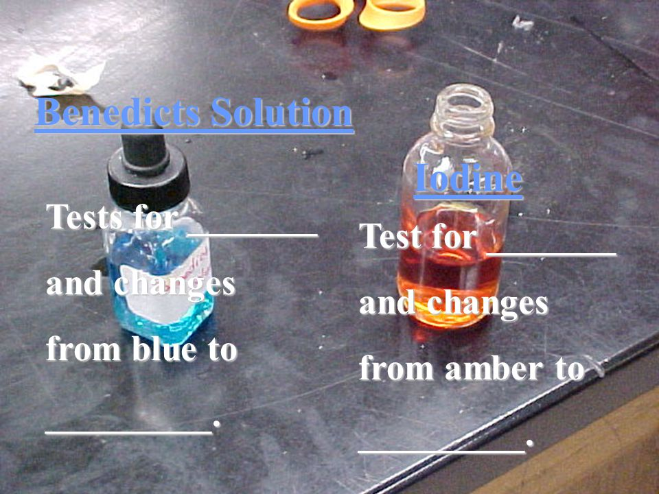 Benedicts Solution Iodine Tests for _______ and changes from blue to