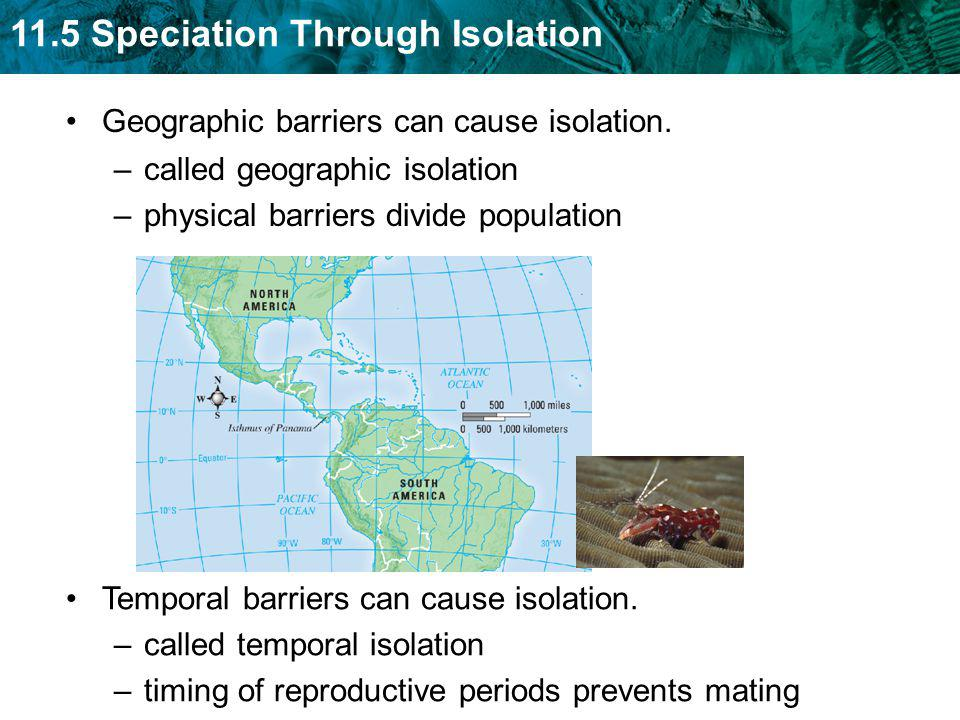 Geographic barriers can cause isolation.
