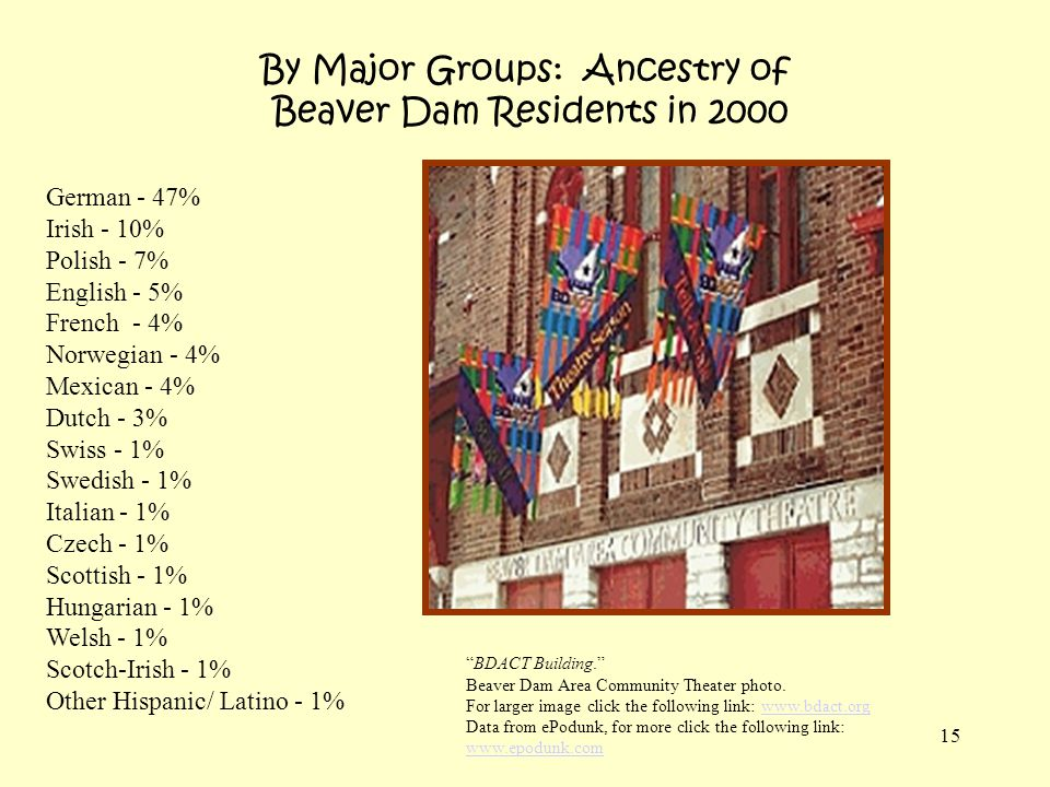 By Major Groups: Ancestry of Beaver Dam Residents in 2000