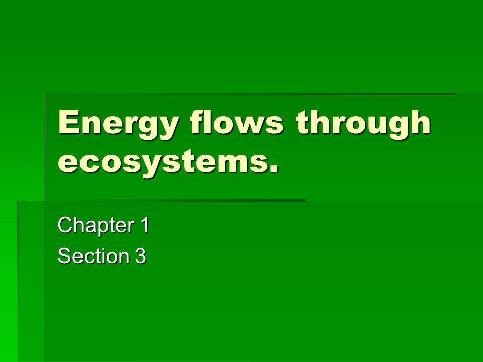 Energy flows through ecosystems.