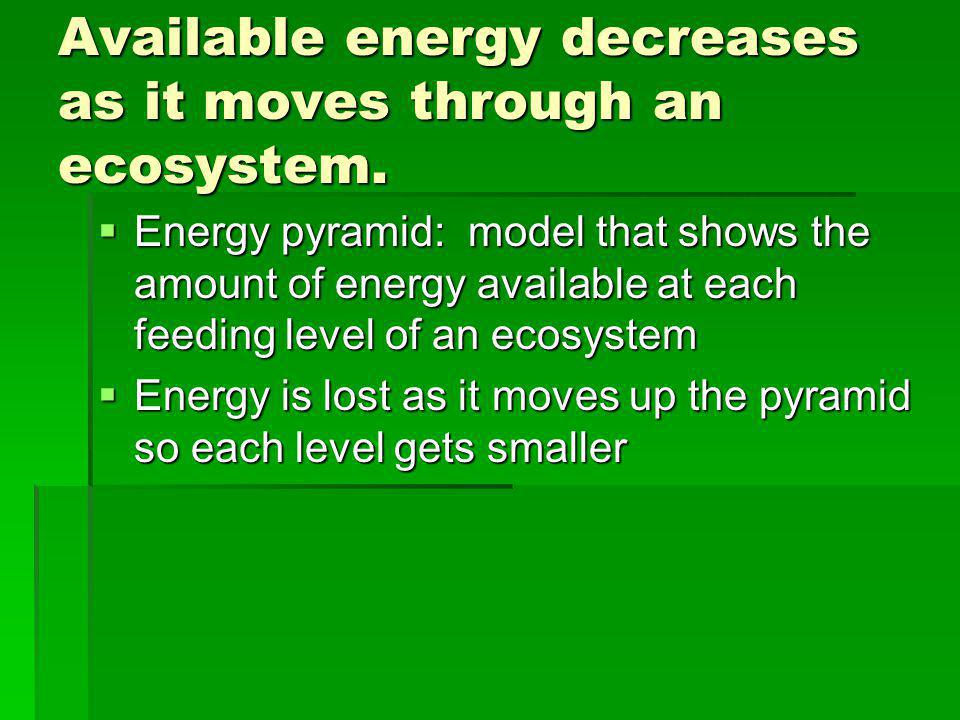 Available energy decreases as it moves through an ecosystem.