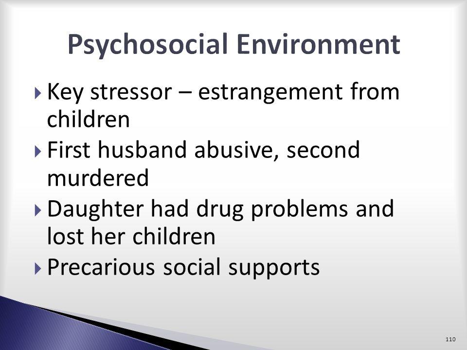 Psychosocial Environment