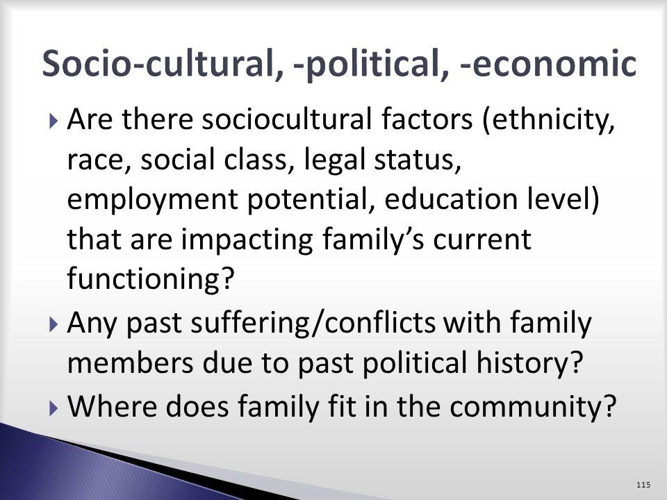 Socio-cultural, -political, -economic